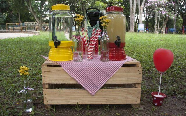 sucos para festa de aniversário piquenique