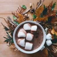 Low Fat Vegan Homemade Hot Chocolate