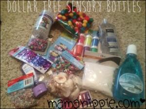 Dollar Tree Sensory Bottle Haul