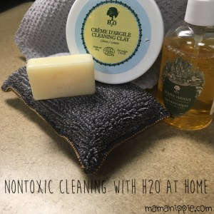 Cleaning is a breeze when you use H2O at Home products! Nontoxic, economical, and safe for the environment and your family it's a product you will feel great using. Read one woman's experience trying the curiosity box and how if effected her cleaning routine.