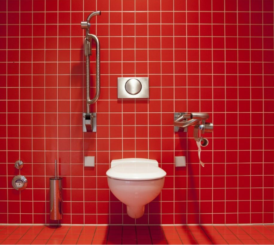 Think Before You Flush! Items That Should Never Go Down The Pan