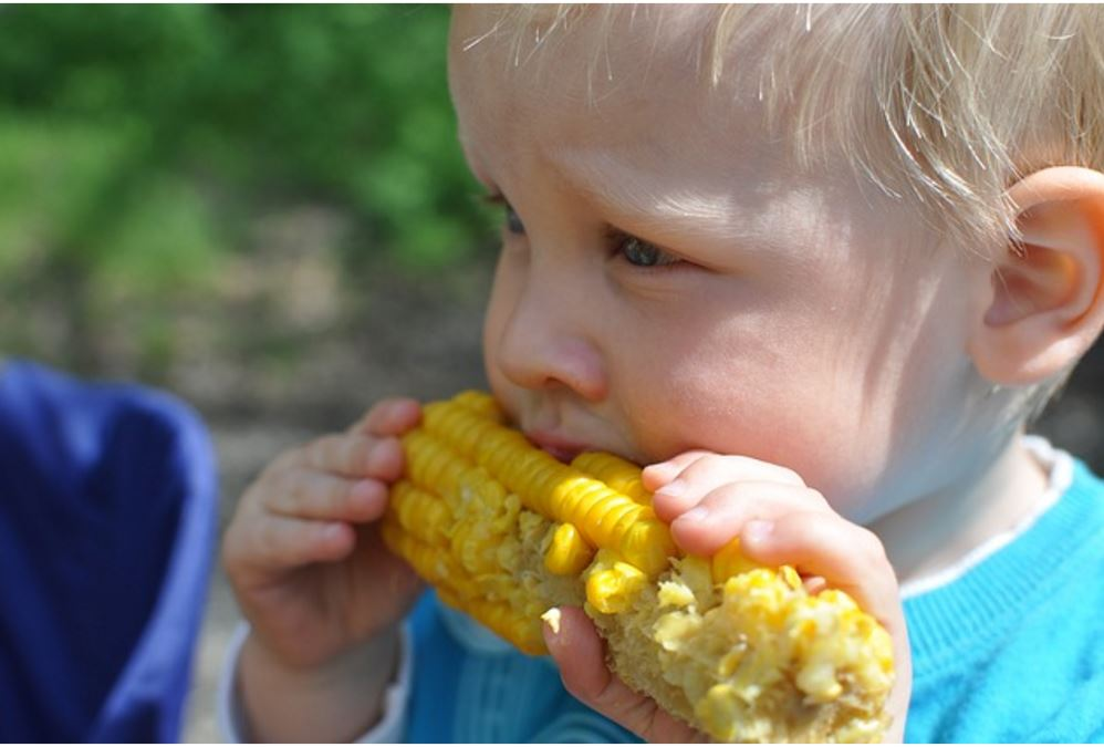 Encourage Your Child To Enjoy Healthy Food With These Top Tips