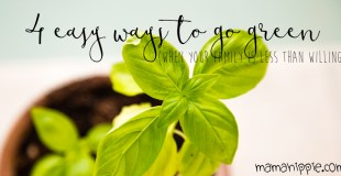4 Easy Ways to Go Green (When You're Family is Less than Willing)