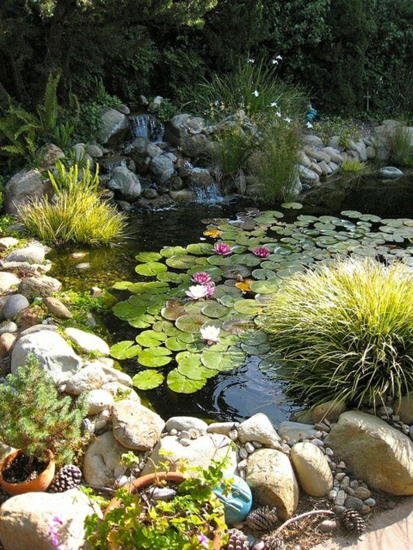 bassin de jardin blog