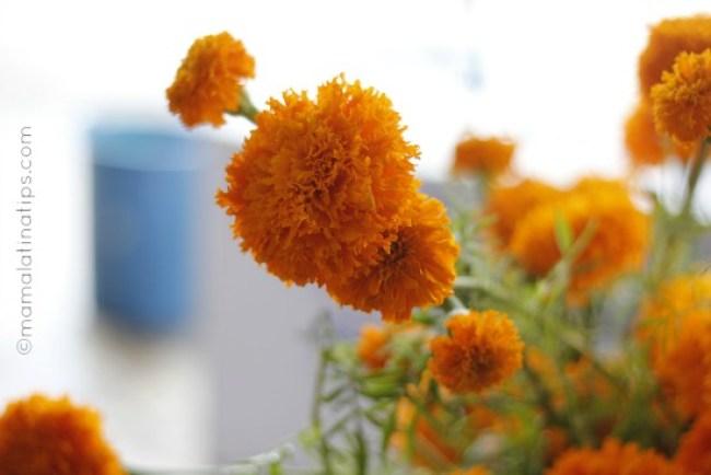 flor de cempazuchitl by mamalatinatips.com