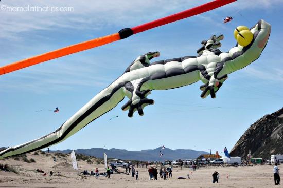 geko kite - mamalatinatips.com