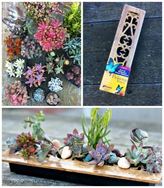 collage with succulents, and a succulent centerpiece