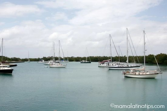 Boats in Miami Fl - mamalatinatips.com