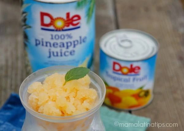 granita-tropical-product-mamalatinatips