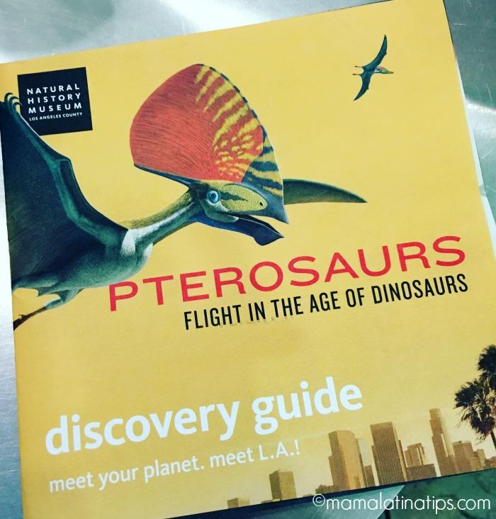 nhm-pterosaurs-map-mamalatinatips