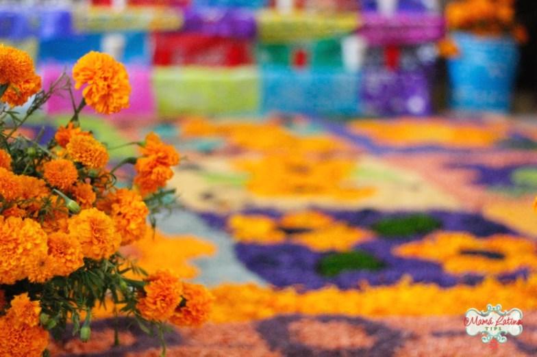 Flores de cempazúchitl