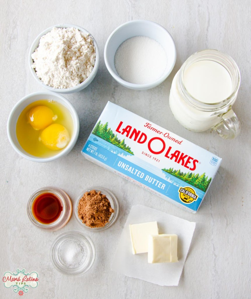 flour, sugar, milk, eggs, vanilla, cocoa, salt and a Land O Lakes butter box.