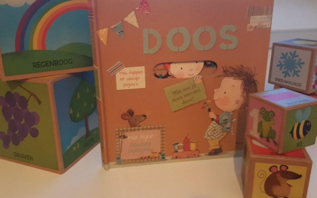 Doos: een prentenboek met flapjes en uitklappagina's