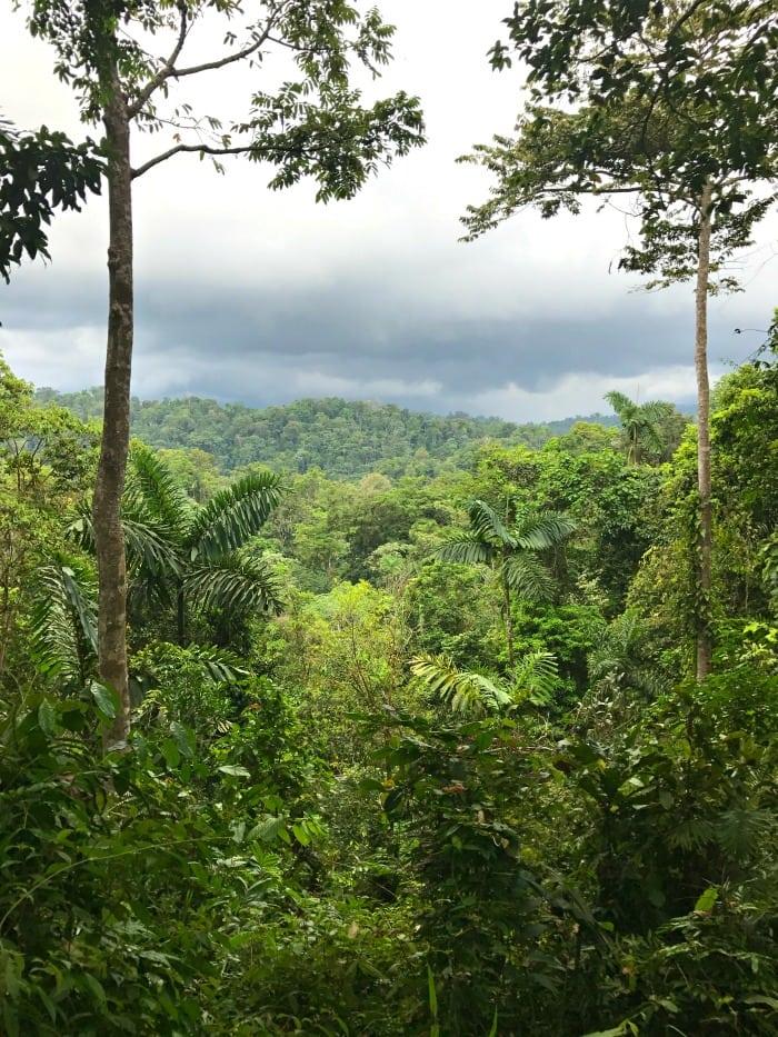 La Amistad in Costa Rica borders Panama