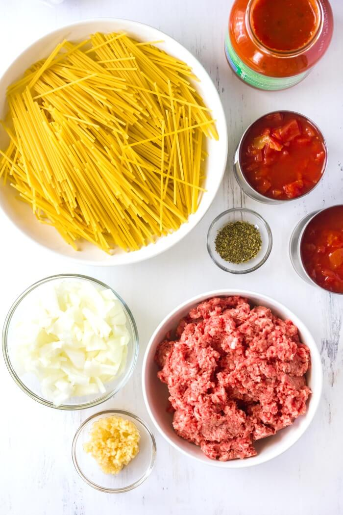 INGREDIENTS FOR INSTANT POT SPAGHETTI