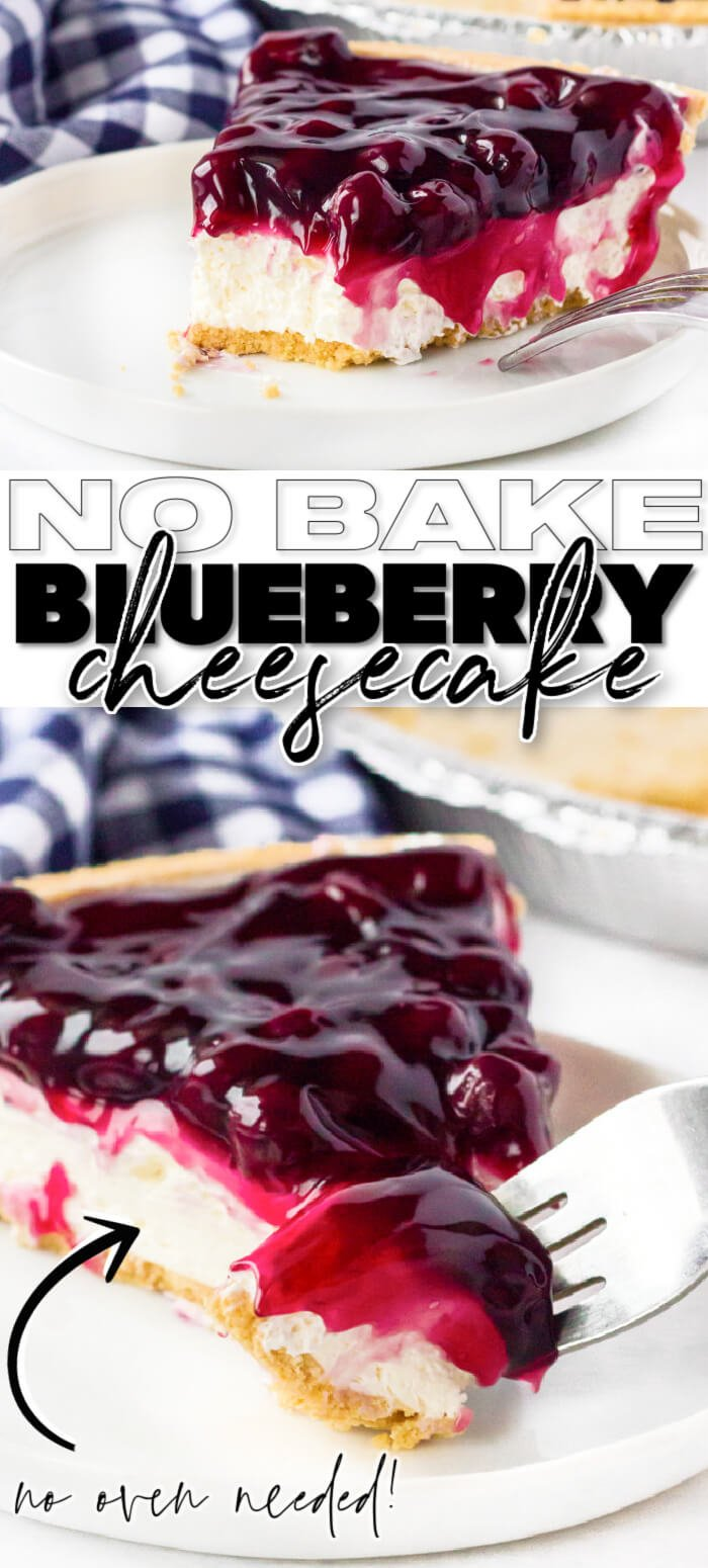 EASY NO BAKE BLUEBERRY CHEESECAKE RECIPE