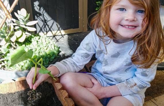 DIY Planter Box activity
