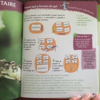 ecologie3