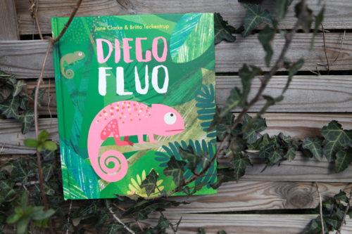 Album jeunesse diego fluo