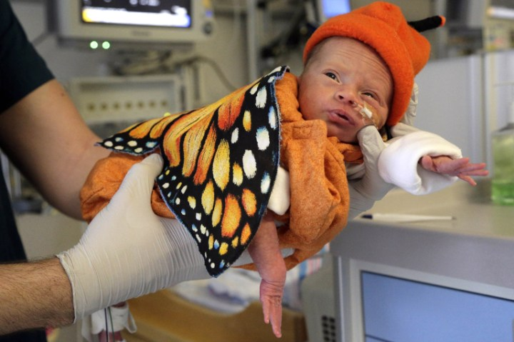 Baby Josefine Staininger is dressed in a butterfly costume at Cedars-Sinai Neonatal Intensive Care Unit, NICU, part of the Maxine Dunitz Children's Health Center, where babies are dressed in hand sewn costumes for Halloween in Los Angeles, Friday, Oct. 28, 2016. The more than 40 costumes are specifically designed for hospitalized babies as small as 2 pounds. The costumes are sewn by nurses, social workers and parent volunteers whose babies were once in the NICU. (AP Photo/Nick Ut)