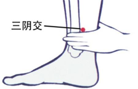 Сань-инь-цзяо 三阴交穴 san yin jiao