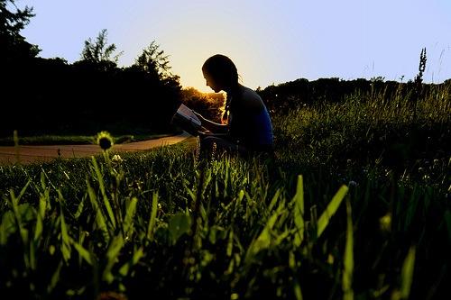 Moment de lecture dans l'herbe