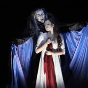 Idée sortie : la comédie musicale «Le Bal des Vampires».