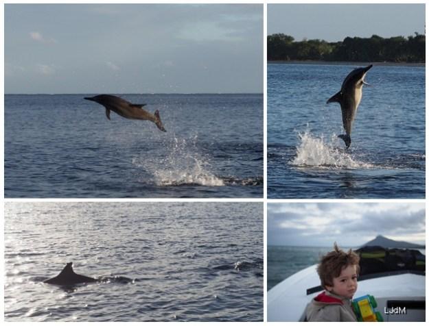 Que faire à l'île Maurice avec les enfants ?