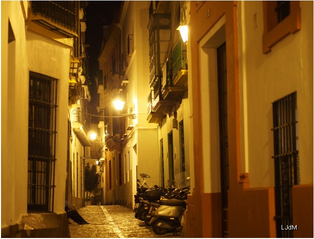 santa_cruz_by night