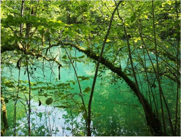 lagune4