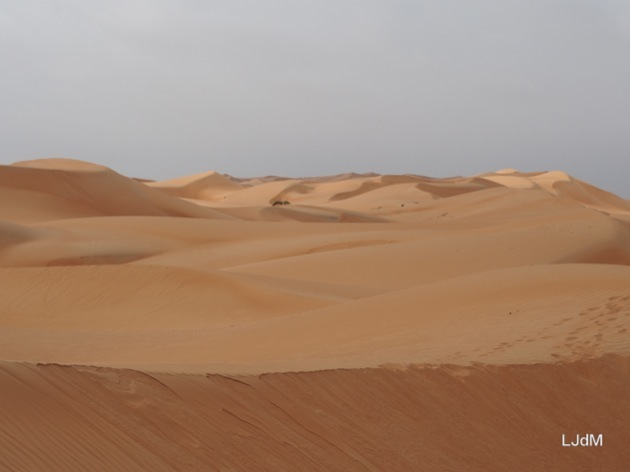 Glamping en famille dans le désert à Oman