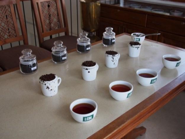 Le Sri Lanka : une histoire de thé