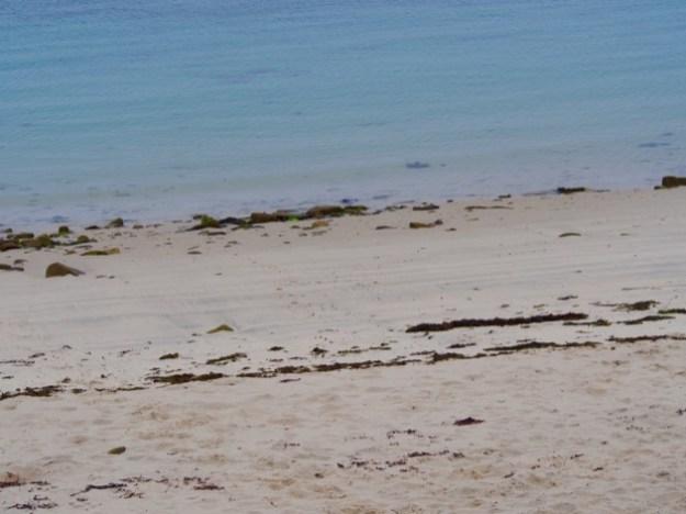 Notre journée en famille sur l'île de Batz