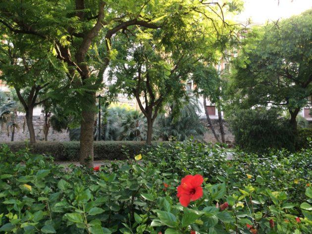 jardin la Turia
