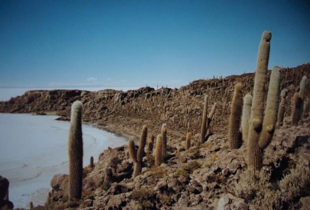 Salar d'Uyuni en Bolivie