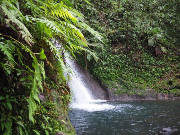 activités Basse-Terre Guadeloupe