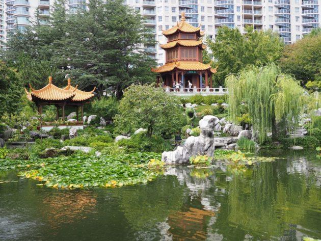 jardin chinois Sydney