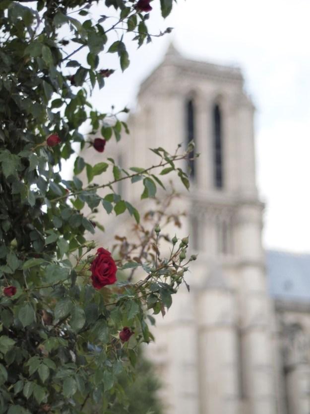 Visiter Paris en Famille
