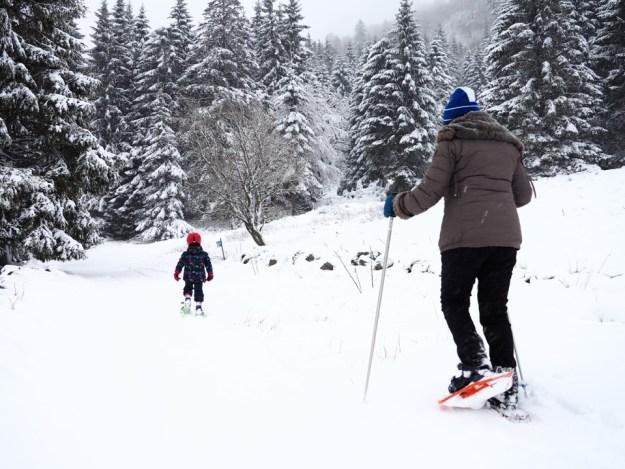 ski dans les vosges