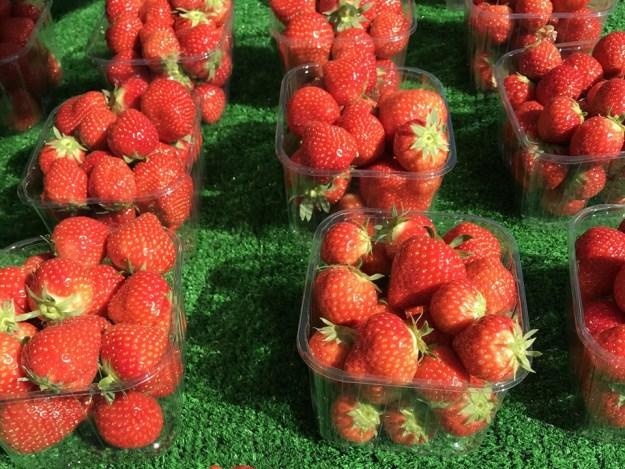 fraise anglaise