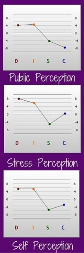 Ashley Profile Graphs (1)