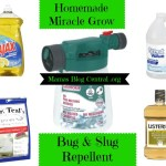 Homemade Miracle Grow & Bug/Slug Repellent
