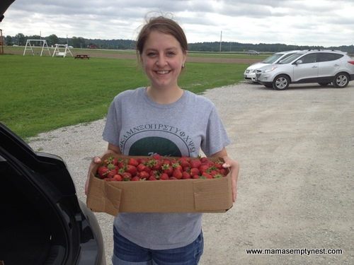 Thies Farm Strawberry Pickin June 2014