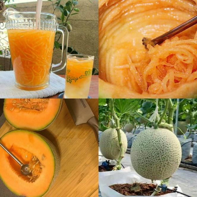 MELON SA MALAMIG (Cantaloupe Juice)