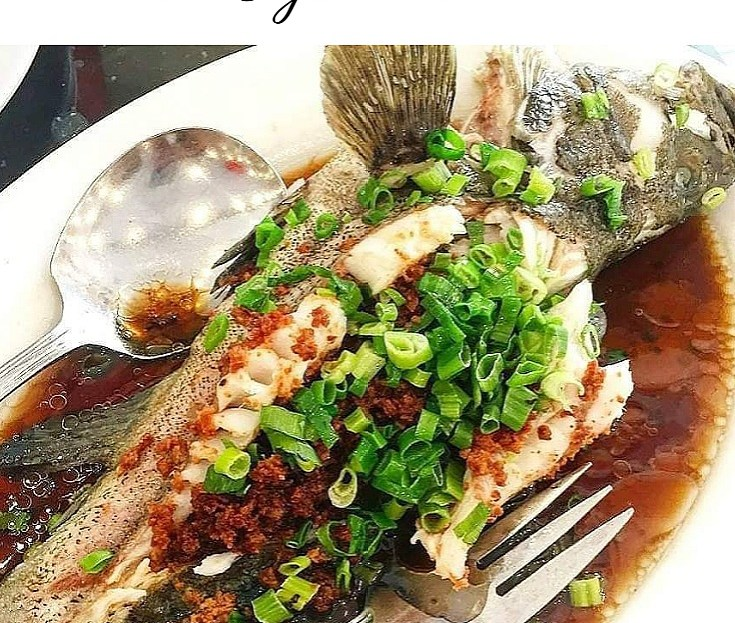 Steamed Lapu Lapu in Oyster Sauce