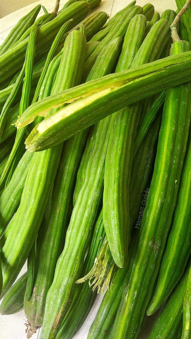 Moringa Fruit (Bunga ng Malunggay), Agud, Hagud,