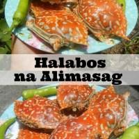 Halabos na Alimasag