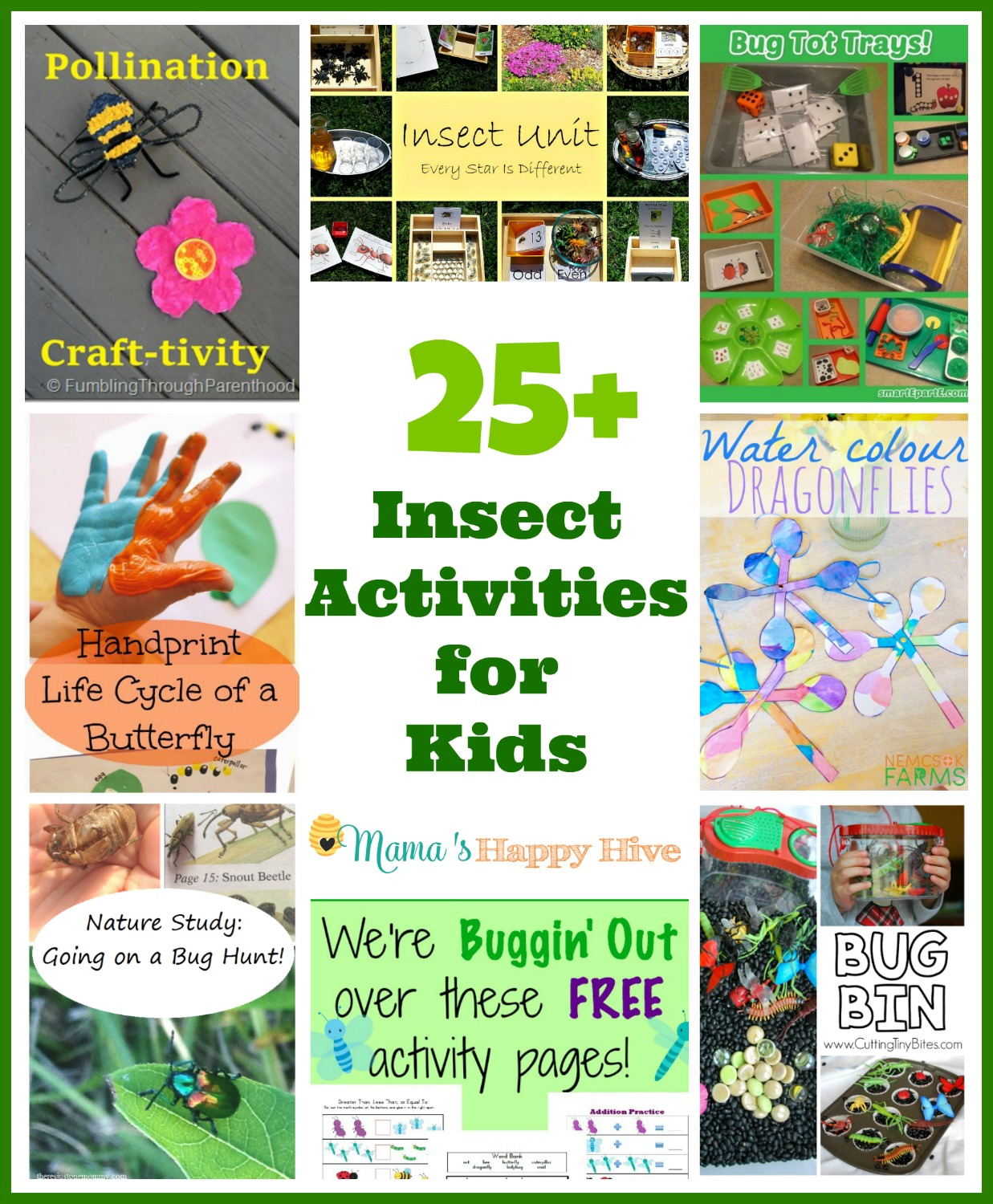 25 Insect Activities For Kids