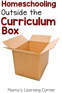 Why We Homeschool Outside the Curriculum Box