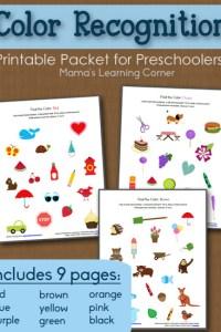 Color Recognition Worksheet Packet